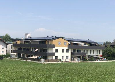 """""""meine Heimat"""", Seekirchen"""